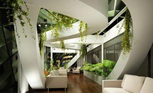 Végétation au bureau le bienfait des plantes